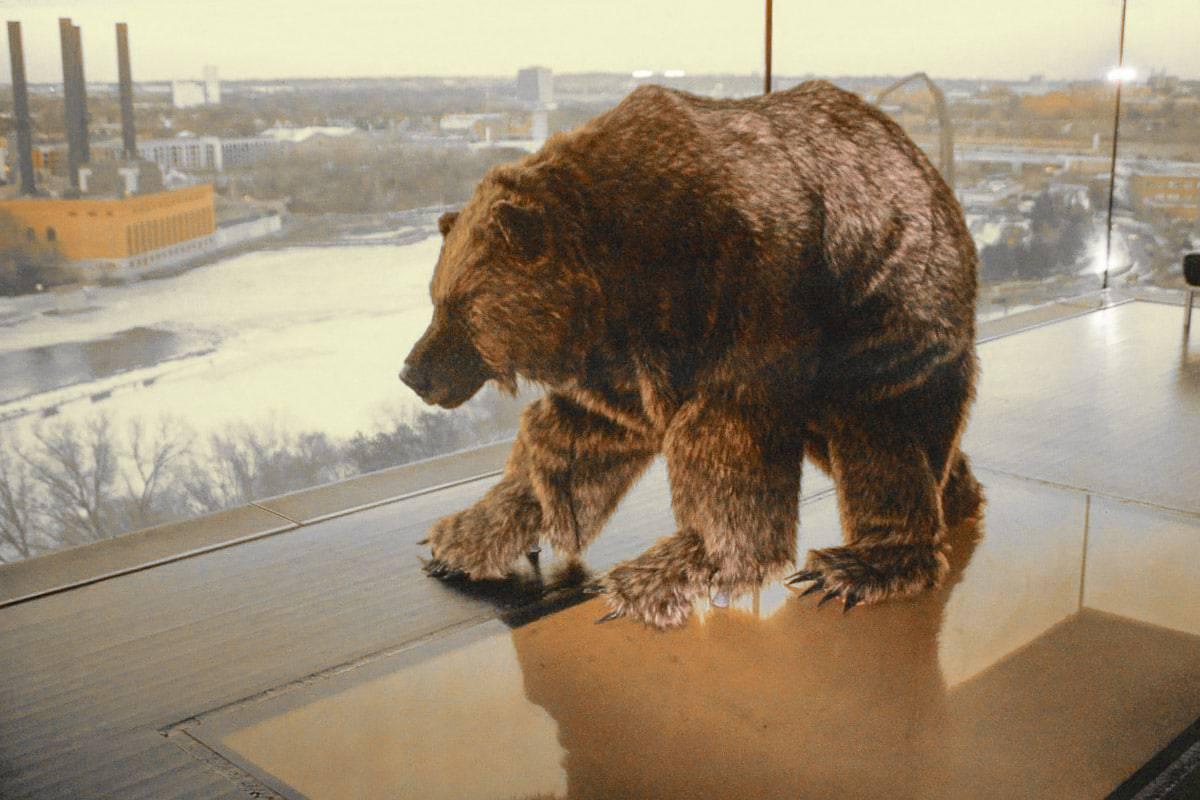 guthrie-grizzly-9-lutter-gardella