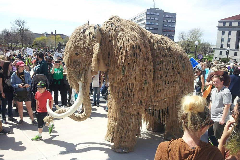 keke-mammoth-21-lutter-gardella