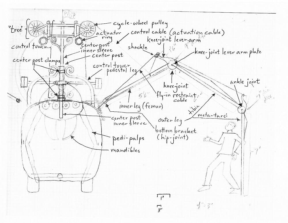 Knee Diagram Project